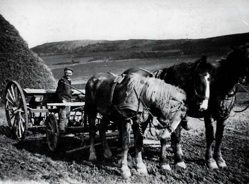 , he_0076, Pferdegespann , um 1917