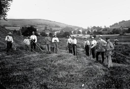 , he_0147, Heuernte im Jahr 1917. , um 1917