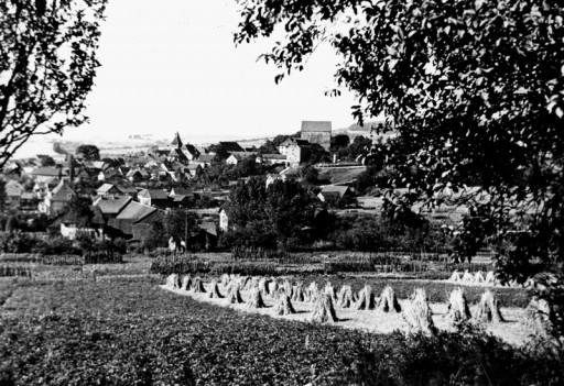 , he_0187, Getreidegarben am Wienberg, um 1929