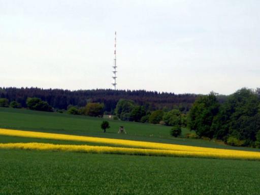 , hen_0028, Espol, 2012