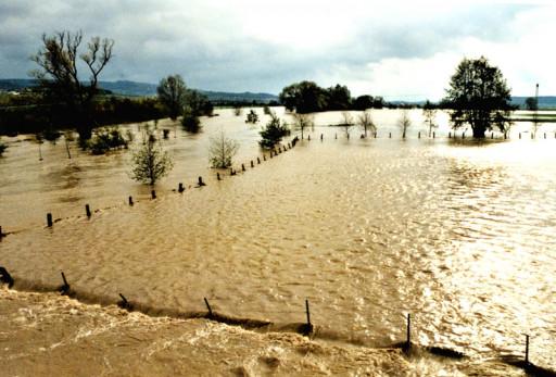 , li_0168, Hochwasser 1998, 0045