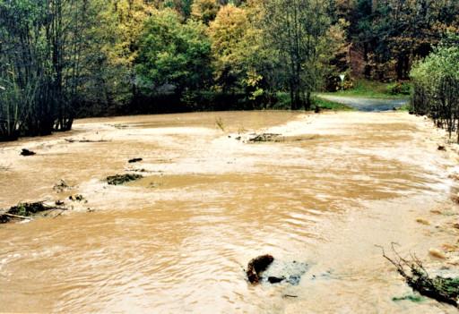 , li_0207, Hochwasser 1998, 1998