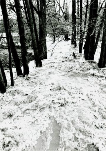 , li_0223, Hochwasser 1998, 1998