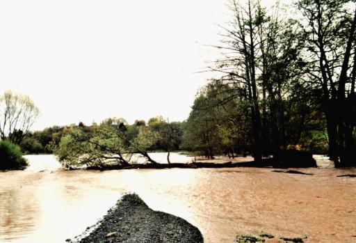, li_0225, Hochwasser 1998, 0012