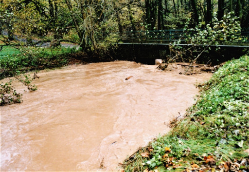 , li_0228/, Hochwasser 1998, 1998