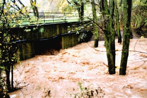 , li_0229, Hochwasser 1998, 1998