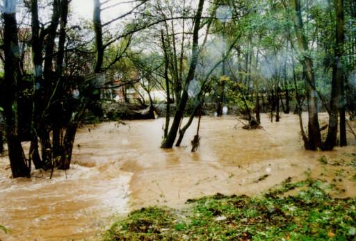 , li_0234, Hochwasser 1998, 1998