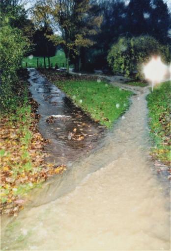 , li_0253, Hochwasser 1998, 1998