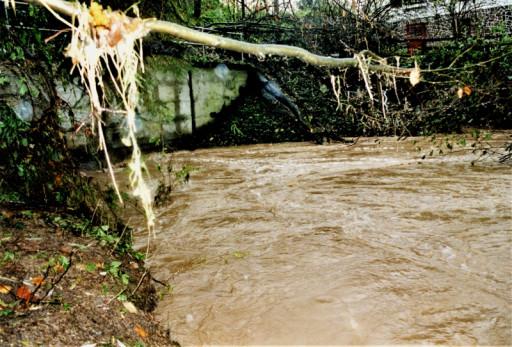 , li_0267, Hochwasser 1998, 1998