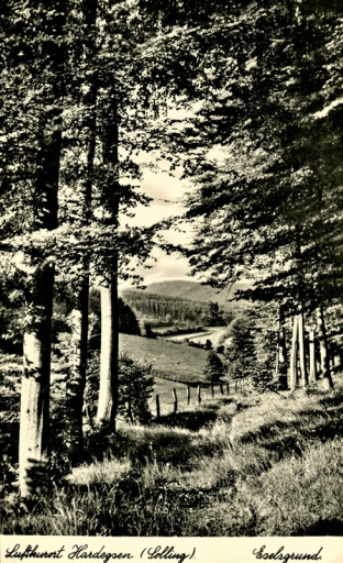 , li_1070, Fremdenverkehr, 1950