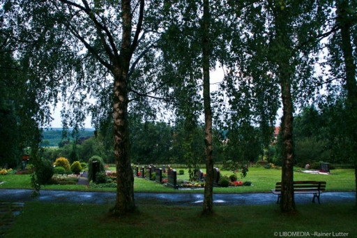 , lu_0001, Lichtenborn, 2006